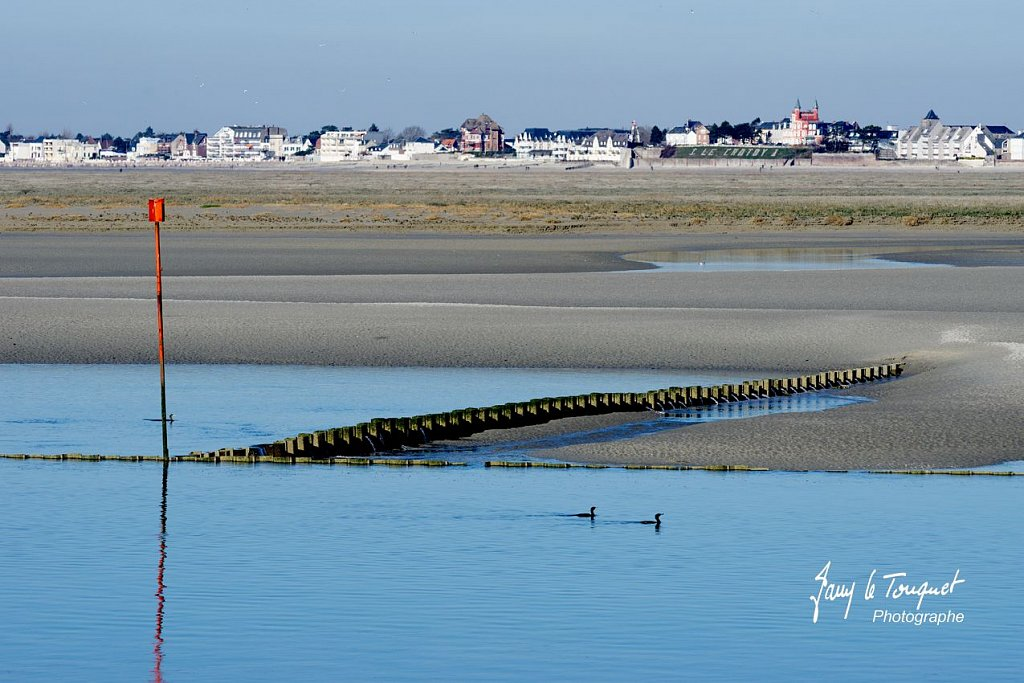Baie-de-Somme-0181.jpg