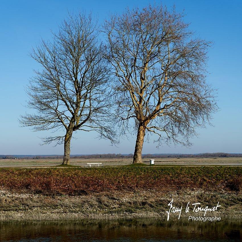 Baie-de-Somme-0184.jpg