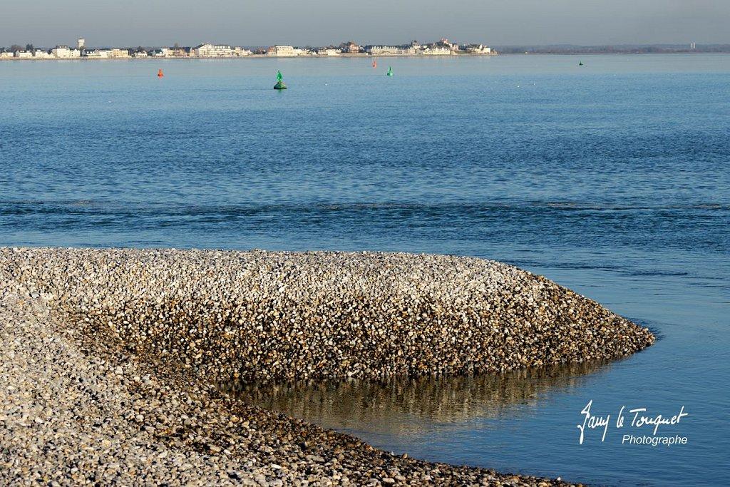 Baie-de-Somme-0196.jpg