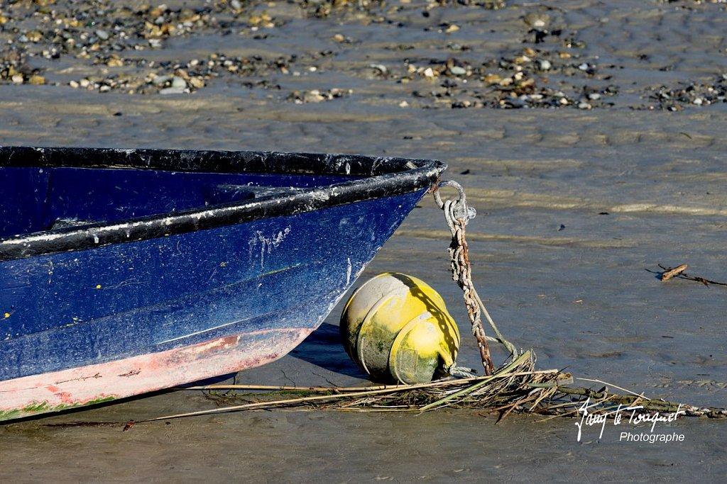 Baie-de-Somme-0176.jpg