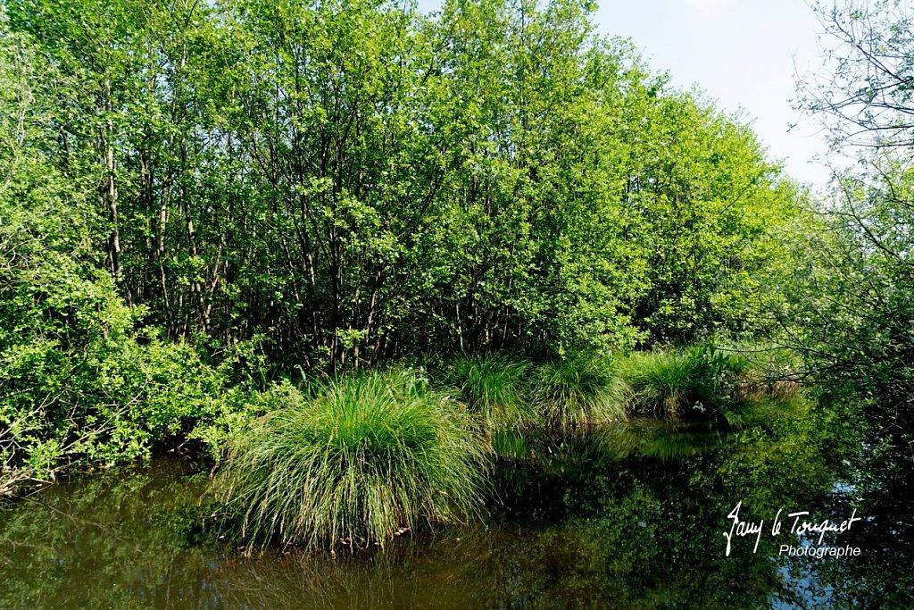 Baie-de-Somme-0209.jpg