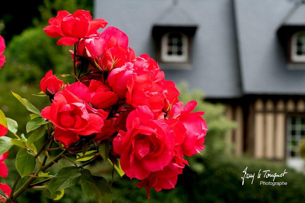 Veules-les-Roses-0097.jpg