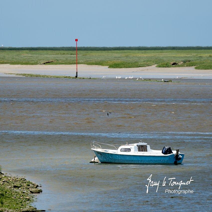 Baie-de-Somme-0242.jpg
