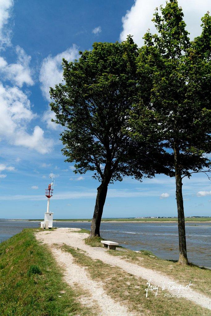 Baie-de-Somme-0244.jpg